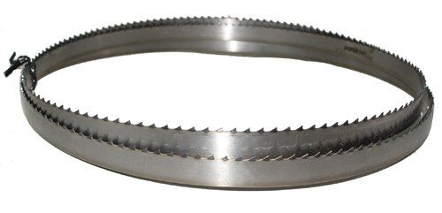 Magnate M76875T58T3 Meat Bandsaw Blade 76-78 Long - 58 Width 3 Tooth 0022 Thickness